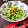 《お知らせ》白菜とにんにくの芽のホットサラダ。~くらしのアンテナ~
