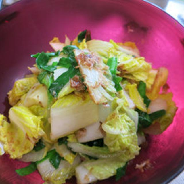 白菜とニラの和風サラダ