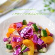 野菜たっぷり☆モロカンサラダ♫彩りきれいなモロッコの朝ごはん☆