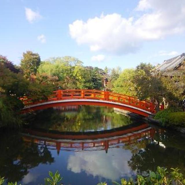 京の紅葉情報