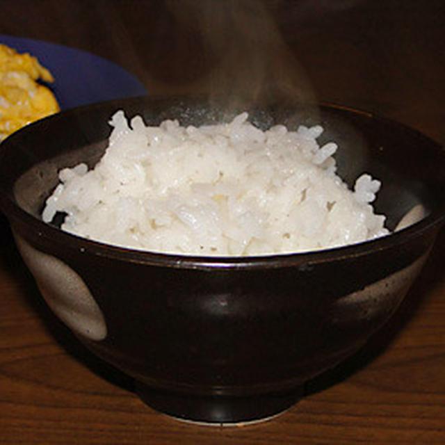 熊本県産森のくまさんご飯