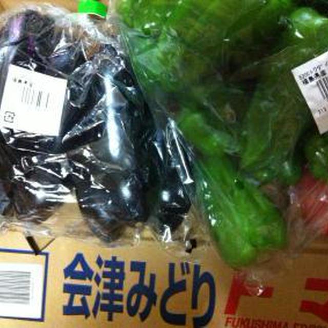 福島産夏野菜でラタトゥユ