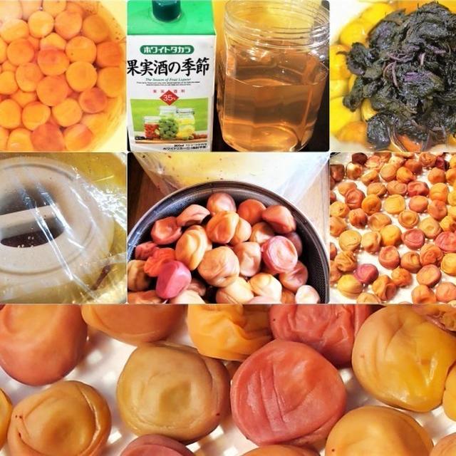 ■自家製保存食【梅干し作業レシピ(P-2)三日三晩の土用干しがやっと終わりました^^!】