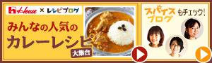 カレーの料理レシピ