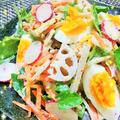 ラディッシュと根菜のごまマヨサラダ