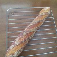 餡とクリームチーズのセミハードパン。