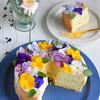 エディブルフラワーのミントシフォンケーキ