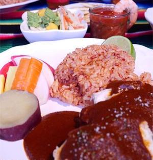メキシコの不思議なチョコレートソース~鶏肉のモーレソース