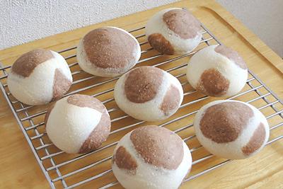 GOPANのお米牛柄ミルククリームパン