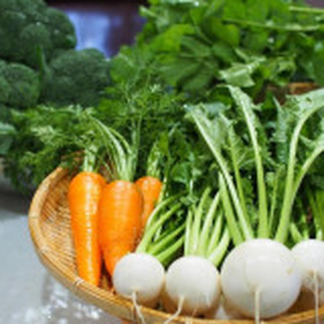 収穫野菜で熱々ポトフ