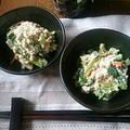 《レシピ》簡単!美味しい!!ホウレン草の白和え♪ と、本日のわんこ。