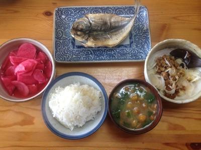 マツモトキヨシ Yahoo!店 - バランス栄養食(健康食品・サプリメント)|Yahoo!ショッピング