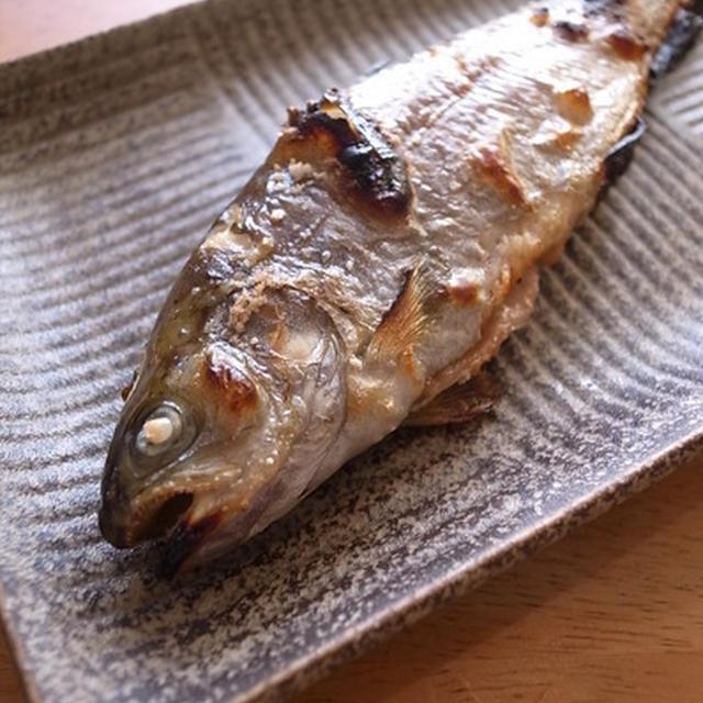 釣った、ますの塩焼きがうますぎて・・・。秋の長野佐久市で