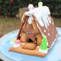 スパイス&アロマ香る♬クリスマスの彩に!夢広がるお菓子の家「ヘクセンハウス」の作り方(*^^*)
