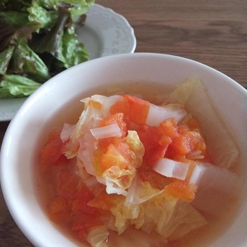 とろける白菜がおいしい♪トマト煮のおすすめレシピ