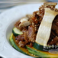 【おろし×おろし】ピリカラおろし焼肉