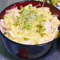 オイスターソースのスタミナ親子丼|レシピ・作り方