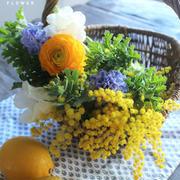 ふわっふわのミモザを飾りたい!春の花とミモザの簡単アレンジ