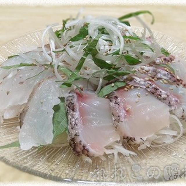 【釣り魚料理:鬼かさご/オコゼ/大口石投】オニカサゴとイシナギの刺身サラダ