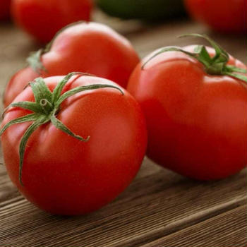 とまと,トマト,蕃茄