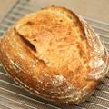 ホシノ酵母を使ったパン