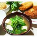 Tokyo♥新幹線から失礼します【Recipe:菜花のお味噌汁】