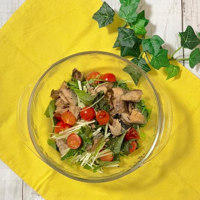 【大量消費レシピvol.15 レンジで✨水菜と鯖缶のトマト蒸し】