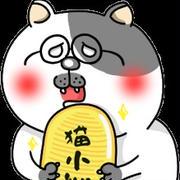 ローカボ調査日誌(71) 飲食から改善☆肌のシワトラブル基礎対処法(前編)
