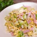 春キャベツのボリューム満点サラダ ポン酢&マヨネーズでモリモリ食べれる