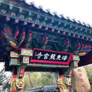 2020➀初詣in釜山2泊3日♡ ~海東龍宮寺(ヘドンヨングンサ)♥