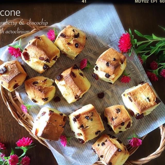 中シットリのホシノ天然酵母でスコーン(チョコとクランベリー)