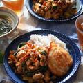 今日は「ぐっち飯」タイ料理はお手のもの!