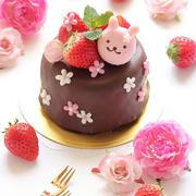 いちごとうさちゃんのチョコレートケーキ☆ ~春バージョンで