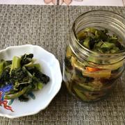 高菜の漬物&茹で葱の味噌ドレッシング