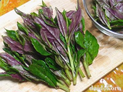 独特風味のネバネバ野菜 美しい赤紫色の金時草 | 加賀野菜