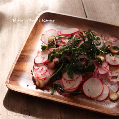 ふみえ食堂のとっておきレシピ  Vol. 188 レディサラダとクレソンのサラダ