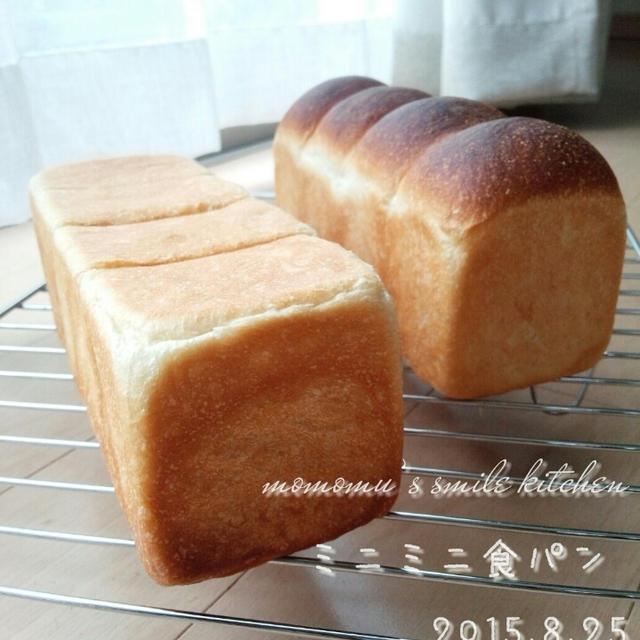妹様とミニ食パン
