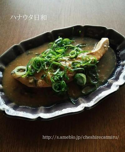 九条ネギまみれのぶりの味噌煮