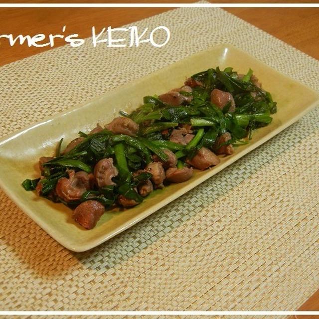 自家用の野菜達 ~レシピは『砂肝とニラの塩炒め』です♪~