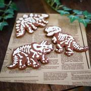 恐竜の化石クッキー、焼いてみました!☆簡単ココアクッキー(おやつ、バレンタイン)