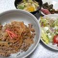 牛丼とサラダ