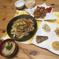 今日の夕飯〜野菜炒め・なんこつの唐揚げ〜作り置きおかず