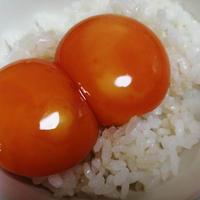 【ごはん泥棒】あごだししょうゆで作る卵黄のしょうゆ漬け。ごはんがいくらあっても足らない!!!