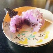 【グルメ旅】ふらっと京都で頂く和食料理