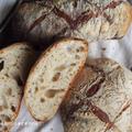 ルヴァン・シェフで作るパン・ド・ロデヴ