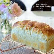 ホシノ天然酵母・ミニ食パン