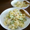 【簡単レシピ】野菜たっぷりマカロニサラダdeサラダ丼♪
