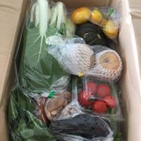 美味しい野菜と果物が届きました!!