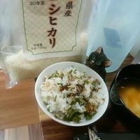 一番早い千葉県産コシヒカリでパパっとサンマの混ぜごはん