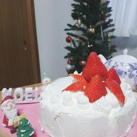 イチゴとカスタードのクリスマスケーキ